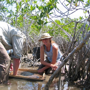 Left to right: Robert Twilley and Nicole Poret. Washing mangrove fine roots to set up a decomposition experiment at TS/Ph-8 in Taylor Slough
