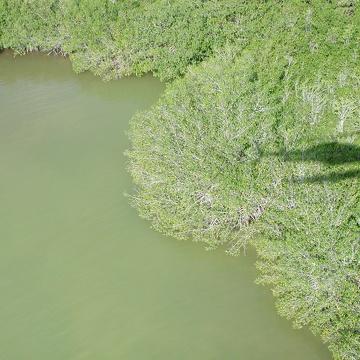 Aerial photo of TS/Ph-7a