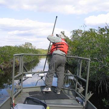 Bill Loftus electrofishing at North River