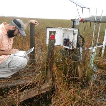 Graduate student David Lagomasino downloading surface water flow data at SRS-1d in Shark River Slough