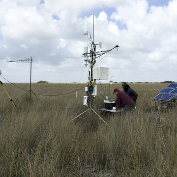 Dr. Greg Starr and Dr. Justin Cummings working on the eddy covariance and meteorological tower near TS/Ph-1b in Taylor Slough