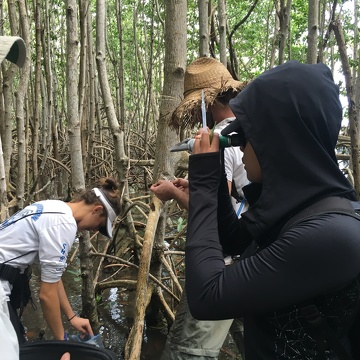 Priscilla Brown (FIU Teach Undergraduate, right foreground) using a salinity meter to measure salinity in Biscayne National Park.