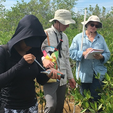 Priscilla Brown (FIU Teach Undergraduate, left foreground) using a salinity meter to measure salinity in Biscayne National Park.