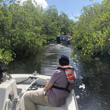 A caravan of boats taking the CISRERP committee up the Taylor River through the scrub mangrove forest to see FCE site TS/Ph 7