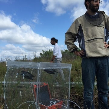 FCE researchers (Ben Wilson and Shawn Abrahams) collecting carbon flux measurements at a brackish water site