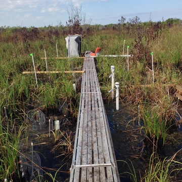 A flux chamber collecting gaseous carbon measurements at a brackish water site