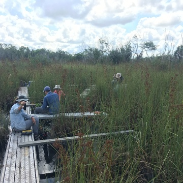 FCE researchers collecting a suite of measurements at a brackish water site