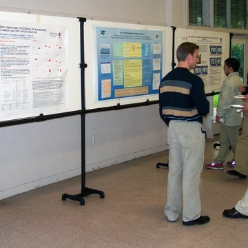 Poster session at the 2003 Florida Coastal Everglades LTER All Scientists Meeting